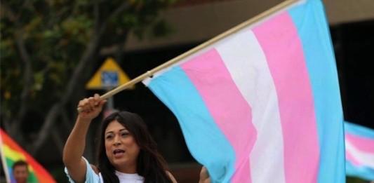 Transgender Initiative